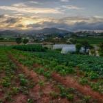 Jinjang Sunset (HDR)