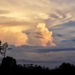 Sideways at Sunset